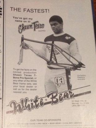 Shawn Texas White bear T-Bone